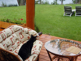 Gartenmöbel wieder sauber bekommen