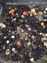 Kompost Schicht