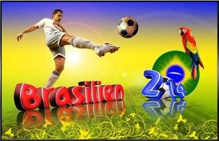 Fussball-WM in Brasilien