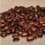 gebrauchten Kaffeesatz verwenden